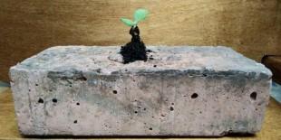 Круглый стол «Обеспечение эффективного использования материалов и технологий за счет применения экологичных материалов с учетом всего жизненного цикла»